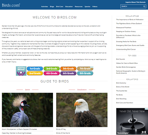 Discover and Learn about Birds | Discover and Learn about Birds
